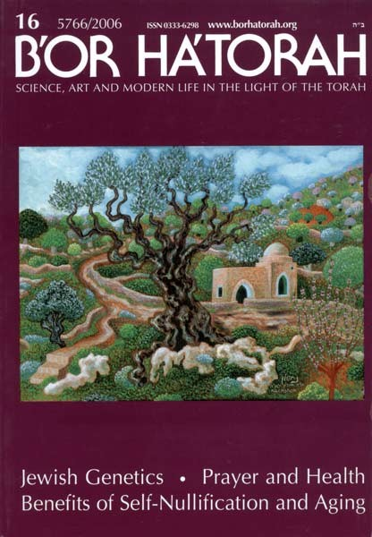 B'Or Ha'Torah Journal of Torah & Science, Vol  16 - English Books