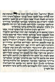 "Mezuzah 25cm (10"") Admur Hazaken"